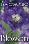awesome-blossom